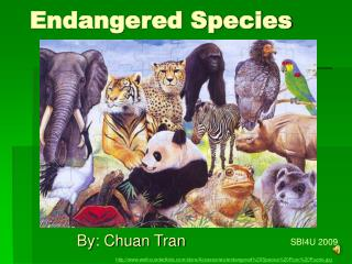 Endangered S p ecies