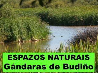ESPAZOS NATURAIS Gándaras de Budiño