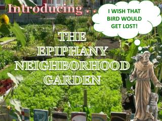 THE EPIPHANY NEIGHBORHOOD GARDEN