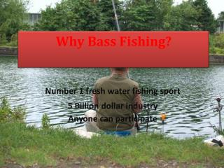 Why Bass Fishing?