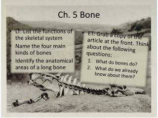 Functions of bones