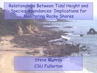 Steve Murray CSU Fullerton