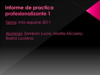 Informe de practica  profesionalizante  1