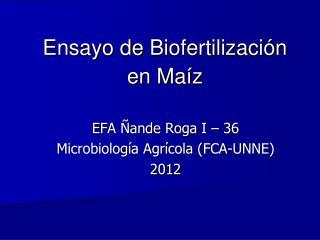 Ensayo de  Biofertilizaci�n  en  Ma�z