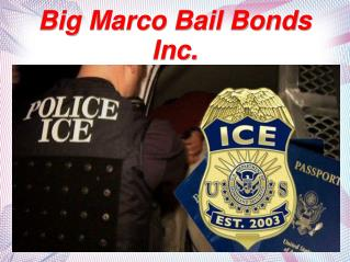 What are Bail Bonds