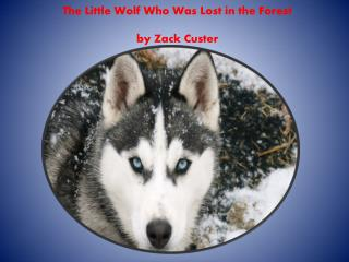 The Little Wolf Who  W as  L ost in the  F orest by Zack  C uster