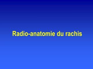 Radio-anatomie du rachis