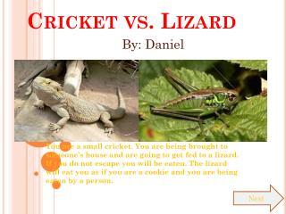 Cricket vs. Lizard