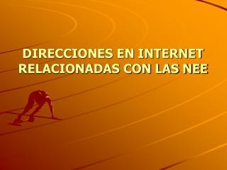 DIRECCIONES EN INTERNET RELACIONADAS CON LAS NEE