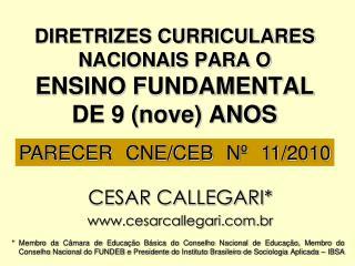 DIRETRIZES CURRICULARES NACIONAIS PARA O  ENSINO FUNDAMENTAL  DE 9 (nove) ANOS