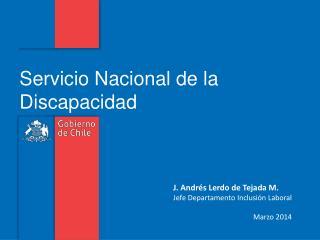 J. Andrés Lerdo de Tejada M. Jefe Departamento Inclusión Laboral Marzo 2014