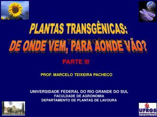 PROF. MARCELO TEIXEIRA PACHECO