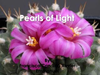 Pearls  of Light