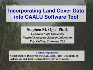 Incorporating Land Cover Data into CAALU Software Tool