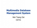 Multimedia Database Management System