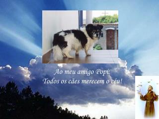 Ao meu amigo Popi: Todos os cães merecem o céu!