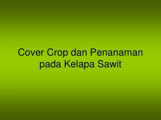 Cover Crop dan Penanaman pada Kelapa Sawit