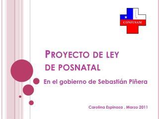 Proyecto de ley de posnatal