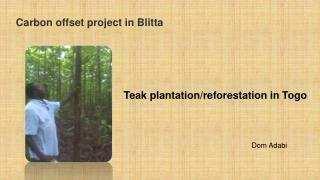 Carbon  offset project in Blitta