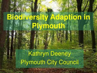 Biodiversity Adaption in Plymouth