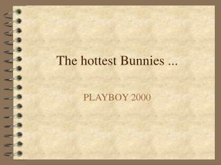 The hottest Bunnies ...
