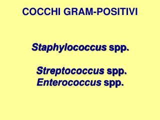 COCCHI GRAM-POSITIVI Staphylococcus  spp.  Streptococcus  spp. Enterococcus  spp.