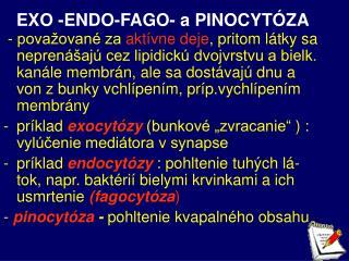 EXO -ENDO-FAGO- a PINOCYTÓZA