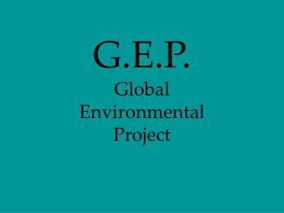 G.E.P. Global Environmental Project