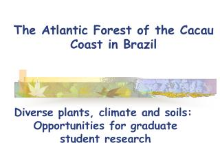The Atlantic Forest of the Cacau Coast in Brazil