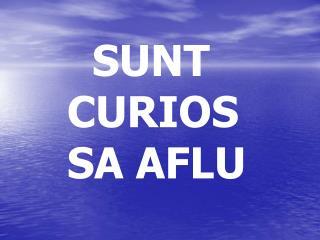 SUNT CURIOS SA AFLU