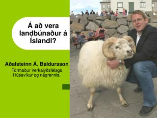 Á að vera landbúnaður á Íslandi?