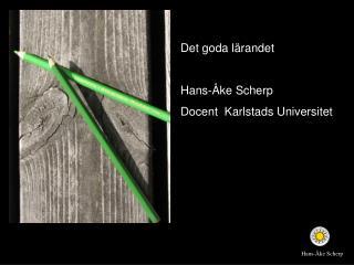 Det goda lärandet Hans-Åke Scherp Docent   Karlstads  Universitet