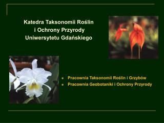 Katedra Taksonomii Roślin  i Ochrony Przyrody  Uniwersytetu Gdańskiego