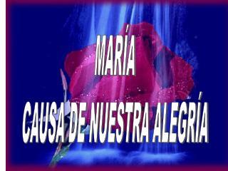 MARÍA CAUSA DE NUESTRA ALEGRÍA