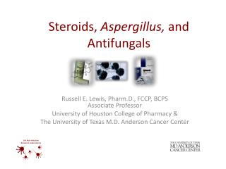 Steroids,  Aspergillus,  and Antifungals