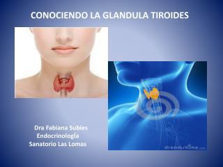 CONOCIENDO LA GLANDULA TIROIDES