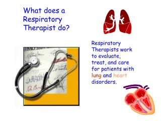 What does a Respiratory Therapist do