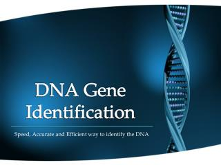 DNA Gene Identification