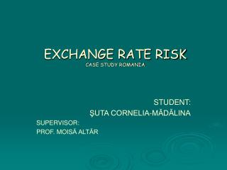 EXCHANGE RATE RISK CASE STUDY ROMANIA