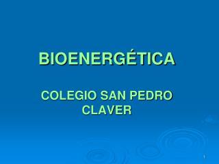 BIOENERGÉTICA COLEGIO SAN PEDRO CLAVER