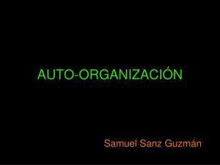 AUTO-ORGANIZACIÓN