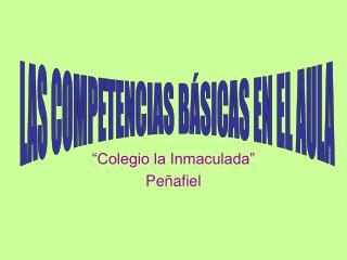 """""""Colegio la Inmaculada"""" Peñafiel"""