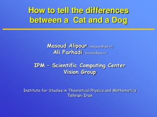 How to tell the differences between a  Cat and a Dog