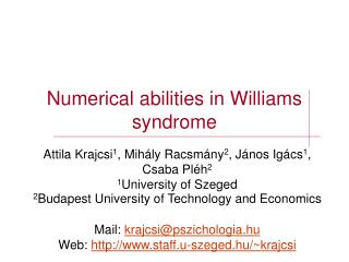 Numerical abilities in Williams syndrome