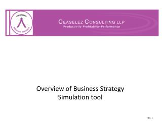 Overview of Business Strategy Simulation tool