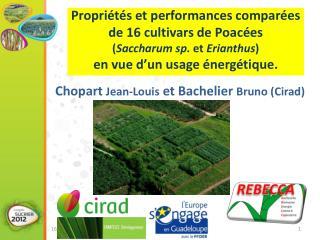 Chopart  Jean-Louis  et Bachelier  Bruno ( Cirad )