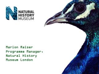 Marion Raiser Programme Manager, Natural History Museum London
