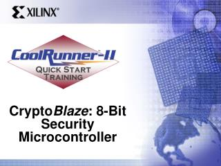 Crypto Blaze : 8-Bit Security Microcontroller