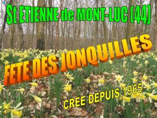St ETIENNE de MONT-LUC (44)