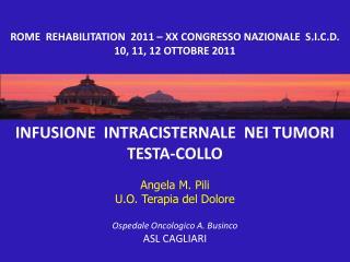 INFUSIONE  INTRACISTERNALE  NEI TUMORI TESTA-COLLO Angela M. Pili U.O. Terapia del Dolore